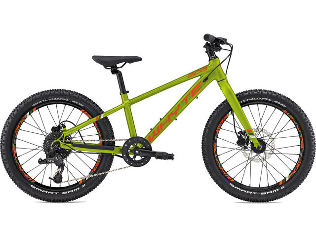 WHYTE 203 V1 Olive click to zoom image